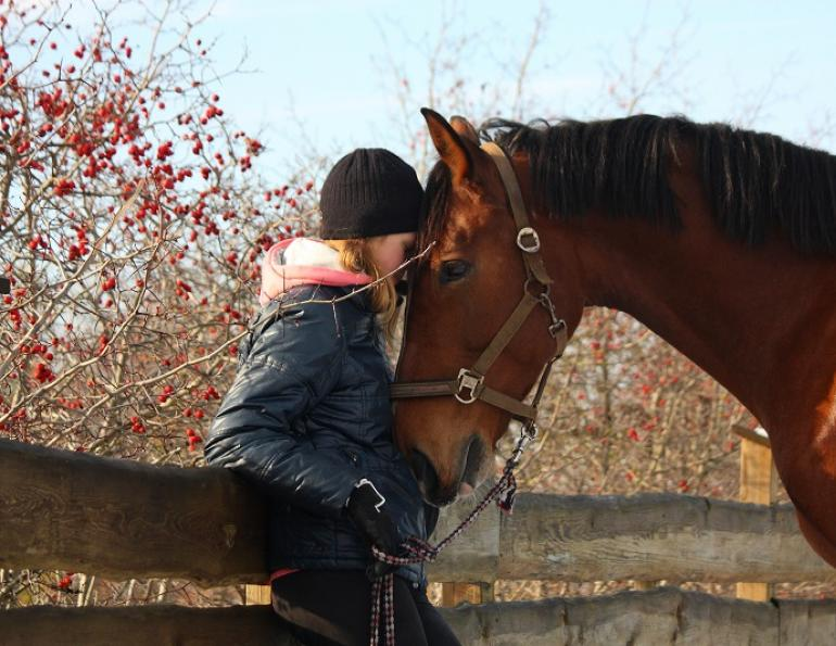 lindsay grice, winter horse riding, riding horses in winter, winter trail riding, winter horse training