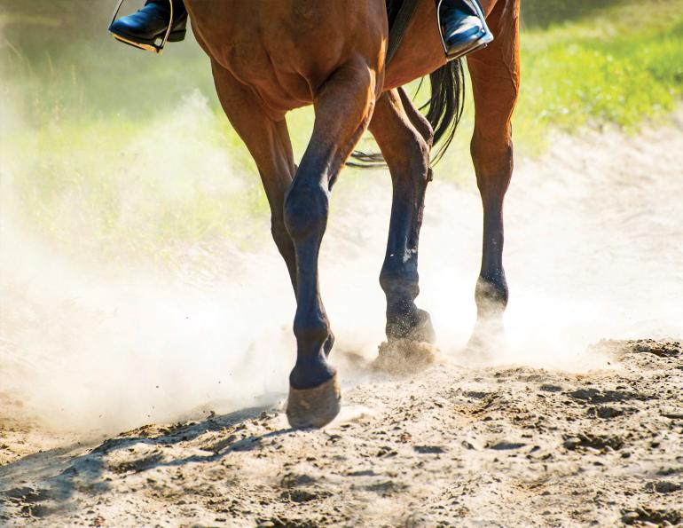 crystalline sillica riding stable, dangers of riding arena dust, health hazards riding arena dust