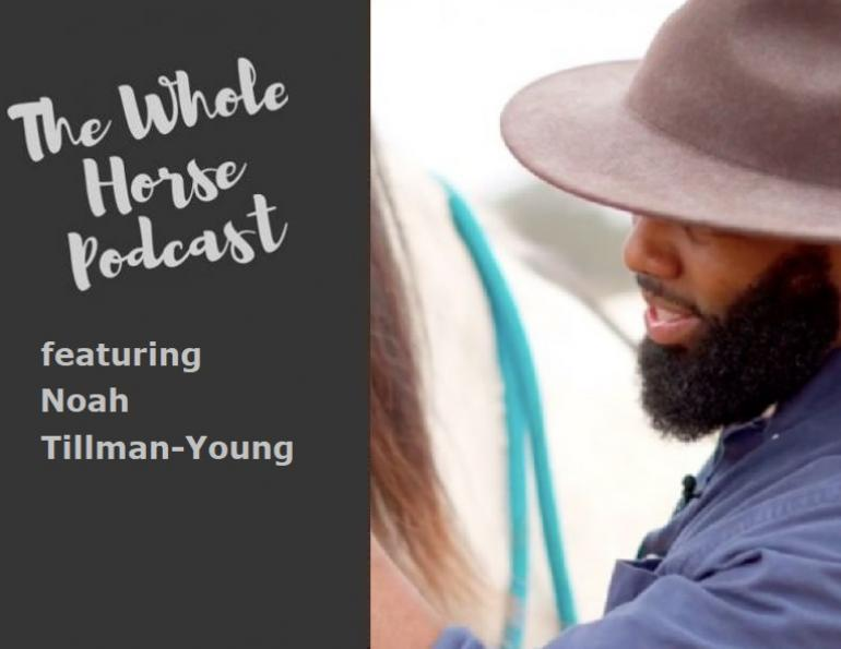 whole horse podcast, best horse podcasts, best equine podcasts, noah tillman young, steady horse llc, fearless rider formula