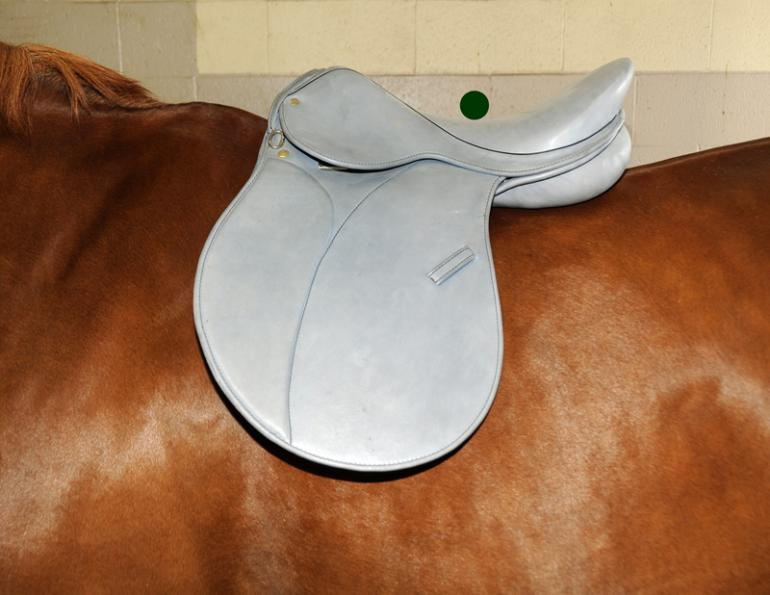 9 Point Saddle Fit, Jochen Schleese, proper horse saddle fitting, Withers Clearance, Gullet width, channel Width, horse saddle tree angle, equine saddle fitting
