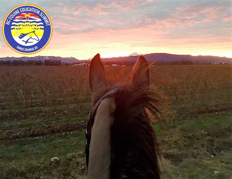 horse council bc, equine education summit hcbc, coach licensing system, equestrian canada