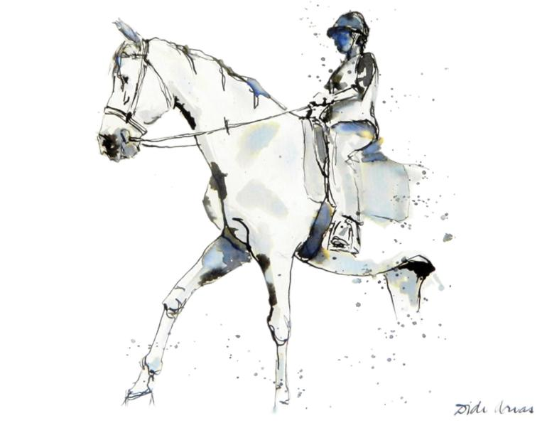 are school horses good to learn on, what do school horses do, how to start riding a horse, didi  arias