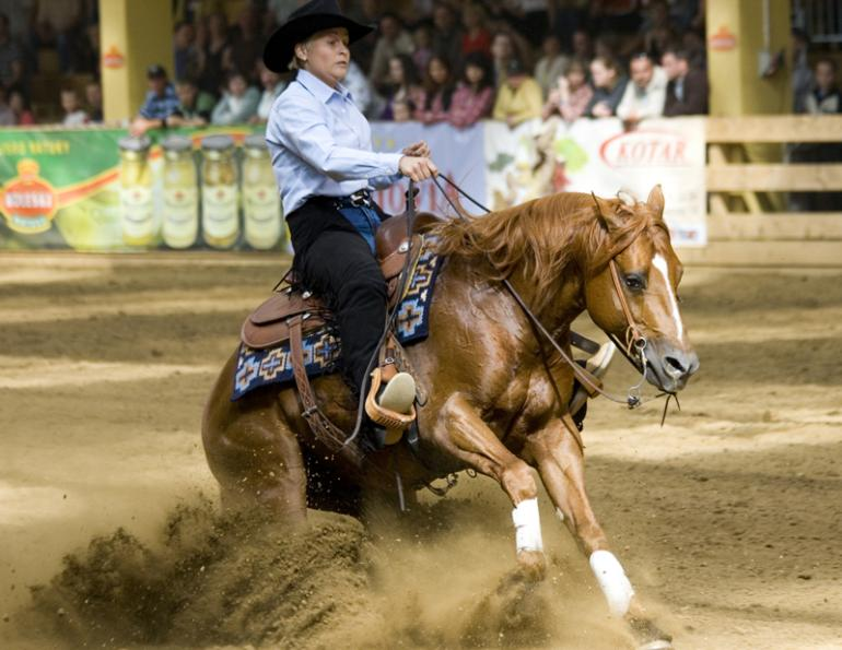 Analyzing Reining Horse Conformation, Lisa Coulter, strong-boned with short, well-sloped pasterns, equine topline, horse conformation, equine conformation, reining horse conformation, kentucky reining cup, nrha championships, fei ranking rider, kentucky equine research