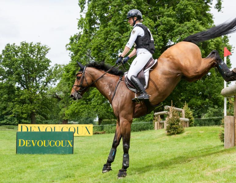 Equine Sports Medicine, eqiune vet Steve Chiasson, DVM, CVMA, What Horses Benefit from Sports Medicine high-performance equine athlete horse chiropractic, equine lameness evaluation, regenerative therapy horses aquatic therapy