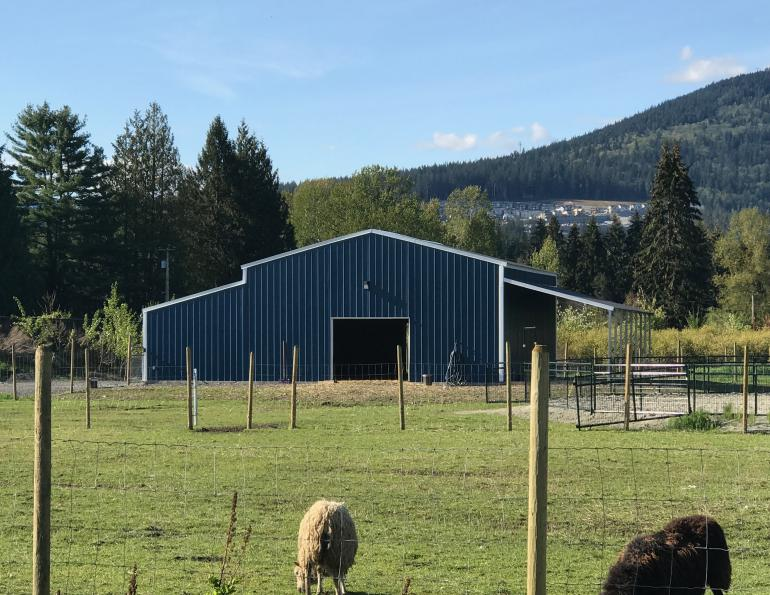Easy Build Structures, horse barn builders british columbia, pre-engineered steel horse shelteres