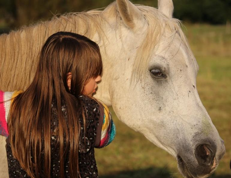 Equine-Facilitated Psychotherapy, horse therapy, equine therapy, Cummings School of Veterinary Medicine, HorsesandHumans