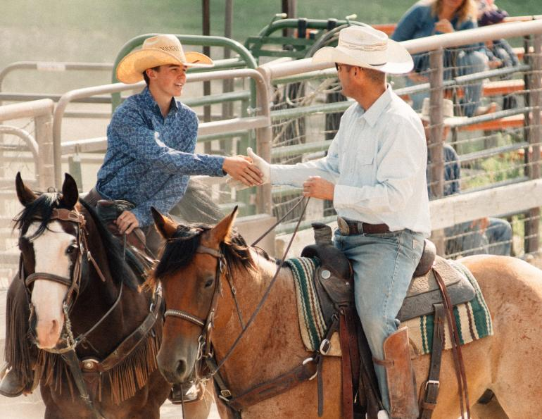 horse-related contracts, buying a horse, legal documents horse sale, horse insurance contracts, horse breeding contract, karen weslowski