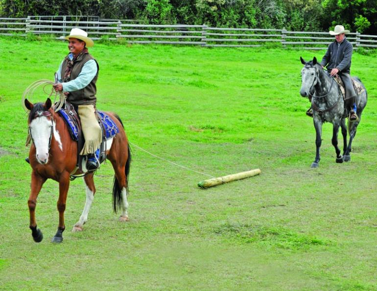 Build Your Horse's Confidence with jonathan field, natural horsemanship, exercises with horses, jonathan field dragging a log, horse confidence