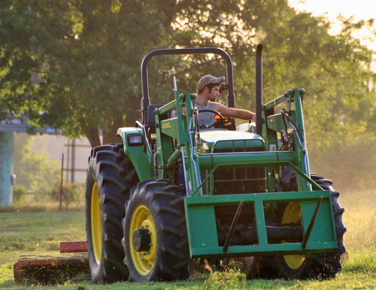 Caring for horse pasture, Dr. Stephen Duren, mowing horse pasture, mowing lawn, horse paddock management, risks horses grazing mowed pasture, horse care, horses consuming molded grass, clipped forage choking hazard horses