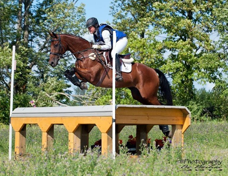 ottb, off the track thoroughbred, jessica phoenix, jessica phoenix off the track, exploring off the track, exponential off the track, world equestrian games, equine guelph, barbara sheridan