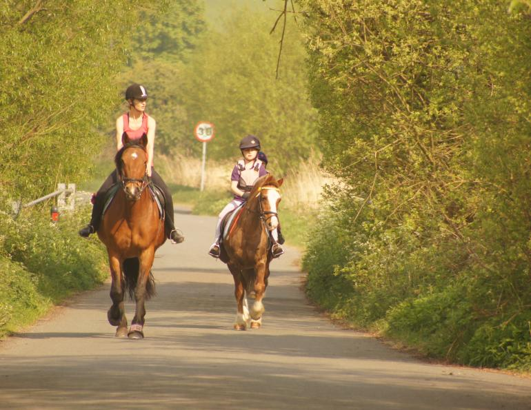 Safe Road Riding on Horseback