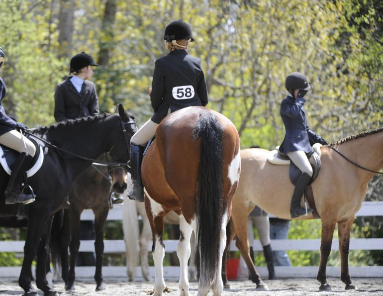 Vaccinating Your Horse Based on Risk