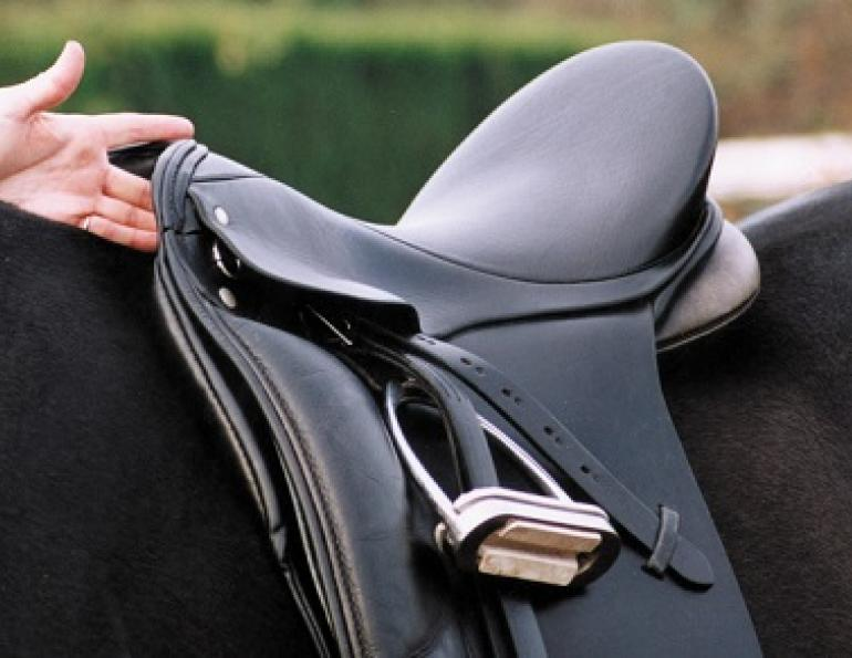 horse saddle fit, properly fitting saddle, how to tell if my saddle fits, does my saddle fit correctly? schleese, saddlefit4life