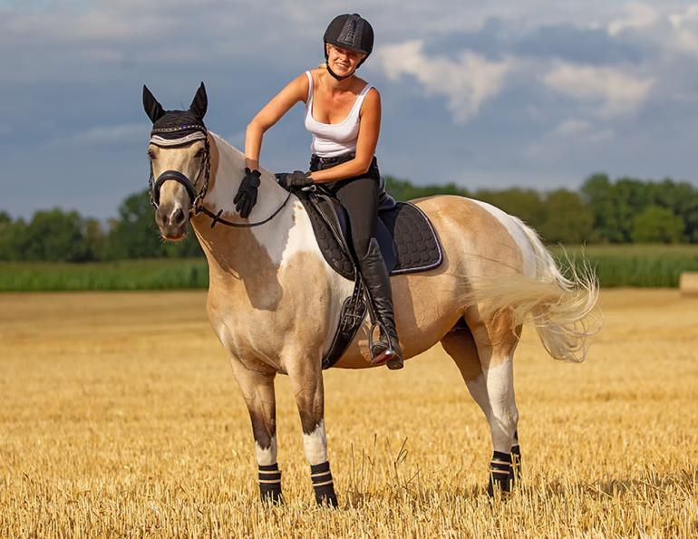 how to correct a problem horse, allowing the horse to figure it out, will clinging horse training
