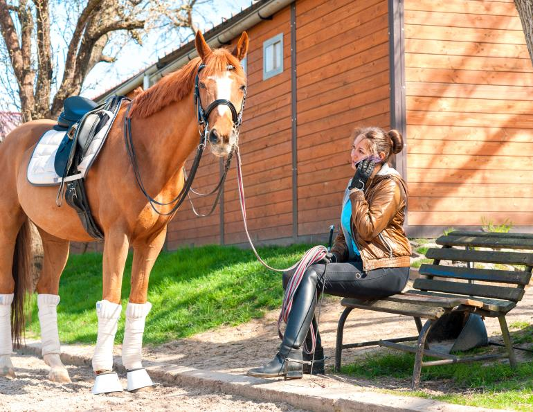 horse leasing contract, horse contract, equine contract, equine leasing, karen weslowski, miller thomson, leasing a horse, how to lease a horse