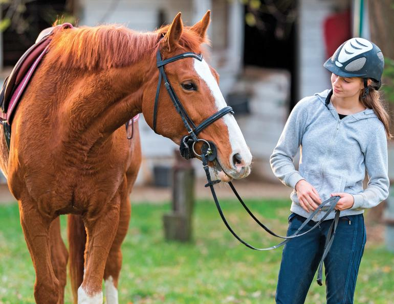 ANNIKA MCGIVERN equestrian psychologist, improve relationship with horse, enjoy riding horses