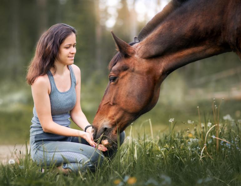 peta claims about horses, should horses be ridden? are horses better off wild? is horse riding unethical?