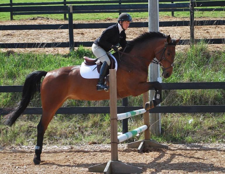 suppling exercises for jumping horses with Liz Ashton