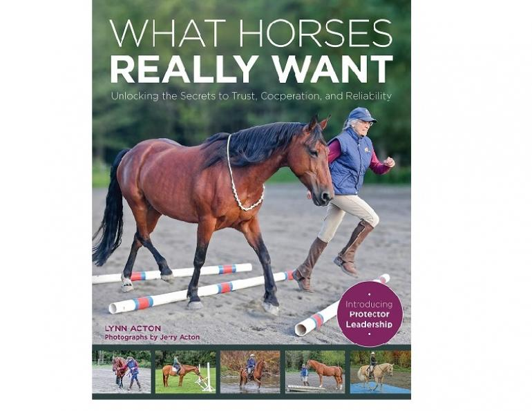 book review what horses really want, lynn acton horse book, horse psychology, how to understand my horse