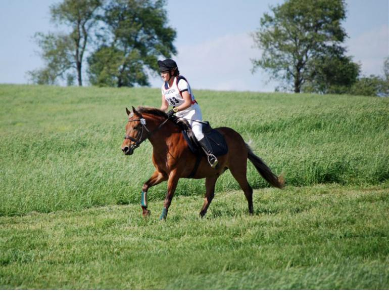 conditioning for equine soundness, equine cardiovascular fitness, long slow distance training horses, proper horse shoeing, strengthening horse on firm ground, Lesley Stevenson