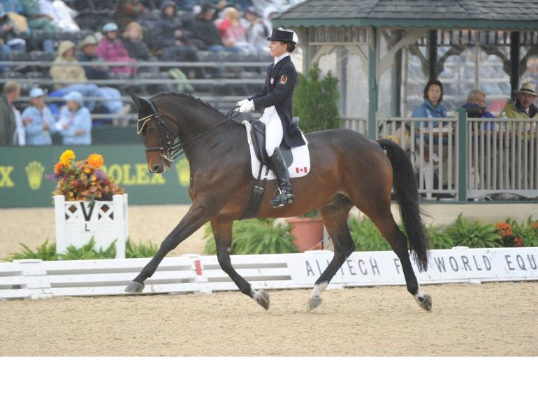 Belinda Trussell, out of the Saddle Exercises to Improve Your Riding Skills, horse riding exercises, correct rider position