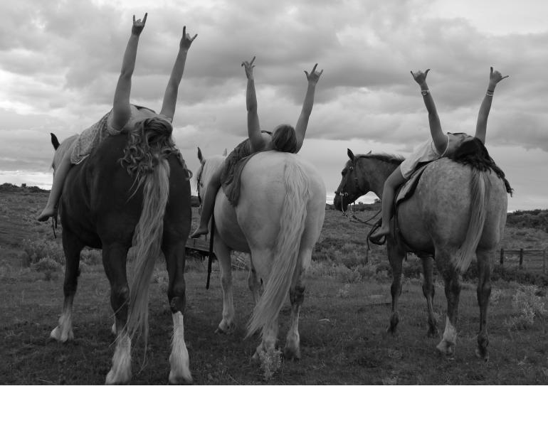 horse photo contest, chj photo contest, the love of horses, equine photo contest