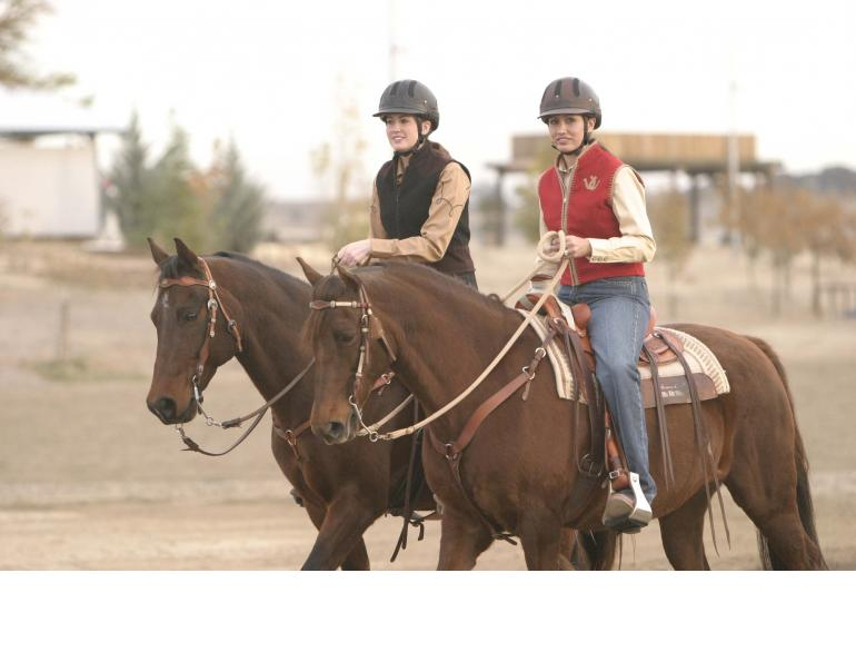 horse trail riding tips, horse riding near home, trail riding young horse