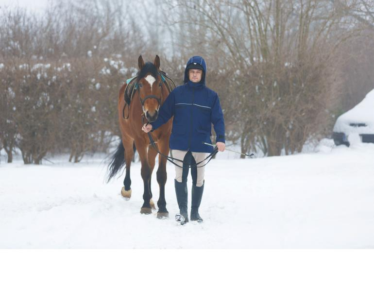 winter riding, cooling out horse, horse snow, riding in show, cold weather riding