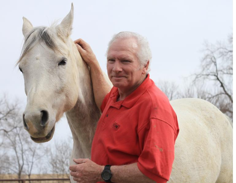 building trust with your horse, horse trust, equine trust, anne gage