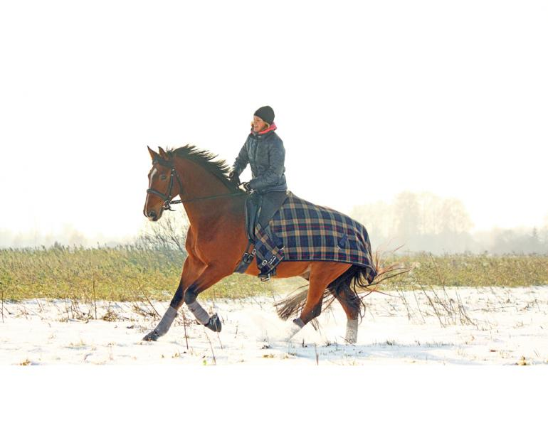 winter riding, riding in winter, horse riding in the winter, winter riding clothes, cooling horse out winter, equine quarter sheet, horse quarter sheet, weatherproof tack, horse riding jackets
