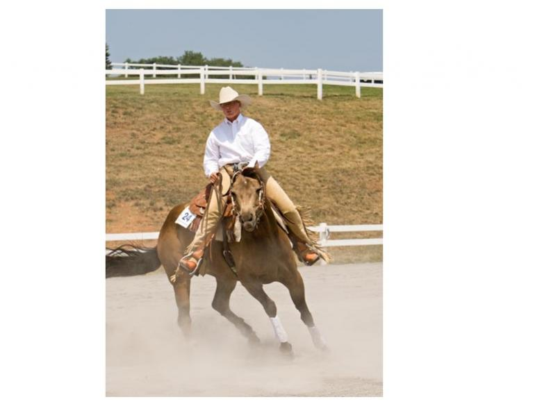 turn on the haunches how to, what is a horse pinwheel turn, groundwork horse, lindsay grice horse trainer