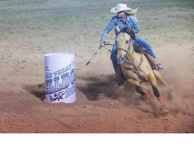 overcoming Equine Lameness, new equine lameness technology, how to rehab lame horse, equine Hyperbaric Oxygen Therapy, Infrared therapy for horses, equine hydrotherapy