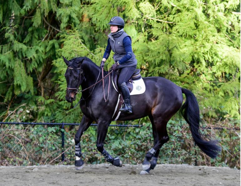 horse psychology, horse rider affirmations, April Clay, equine rider affirmations