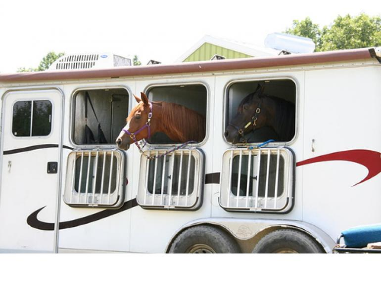 Kevan Garecki, Horse trailer choices, horse trailering, horse hauling, straight-haul designs, Angle-haul vs Straight-haul, gooseneck trailer, horse trailer braking system, bumper-pull trailer, Horse Trailer Options