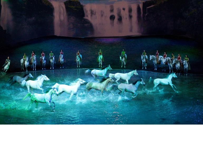 Cavalia and Odysseo