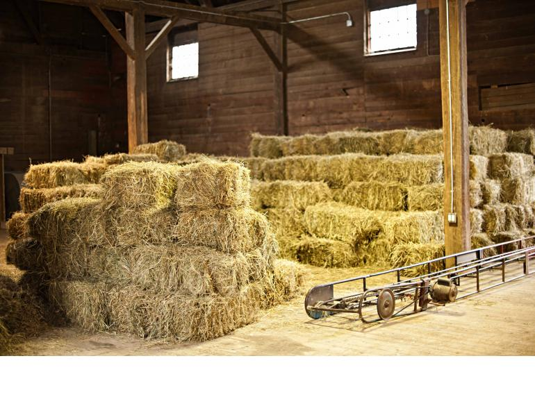 eastern hay corp, horse hay lofts need to be clean. Old horse hay, insects, heat and moisture will be very detrimental to the new horse hay stored in the loft.