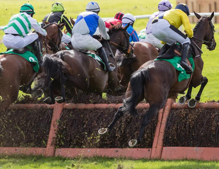 how horses see colour, changes to horse jump racing hurdles and fences, Equine Vision Research, human sight vs horse sight