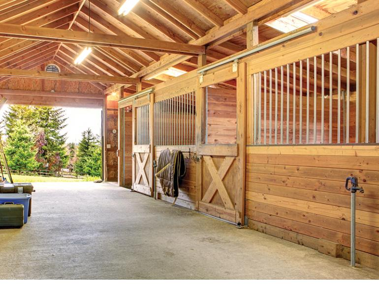 design Horse Stall layout, Eileen Wheeler, Ph.D., Professor of Agricultural Engineering, dimensions of horse stall, ventilating horse stall, equine respiratory, lights for horse stall, flooring for horse stall