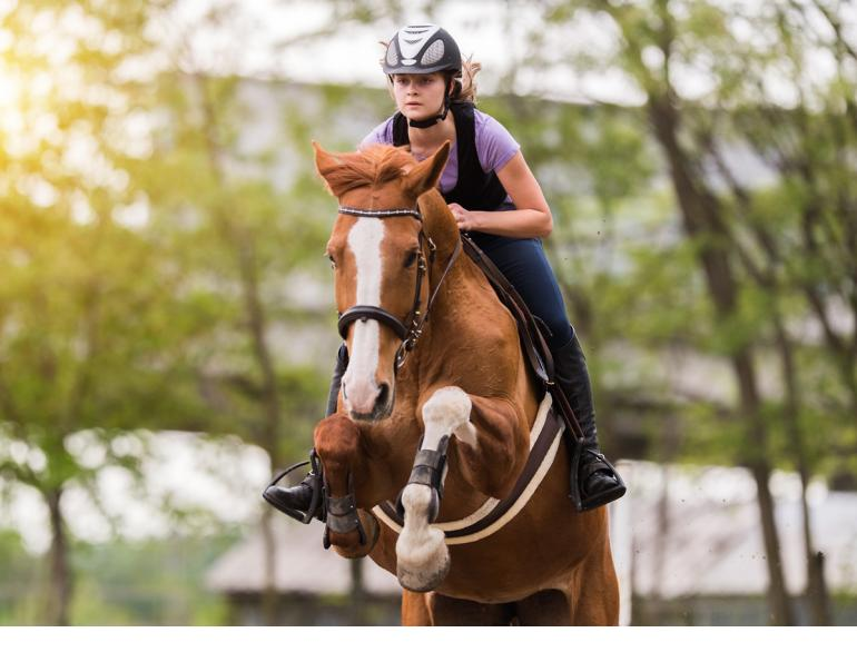 am I overtraining my horse? drawbacks of overtraining your horse, how much should I train my horse? how much time should I leave between horse training sessions?