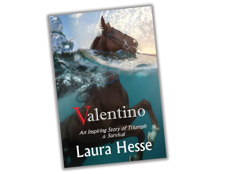 valentino by laura hesse, really good horse books, new horse books