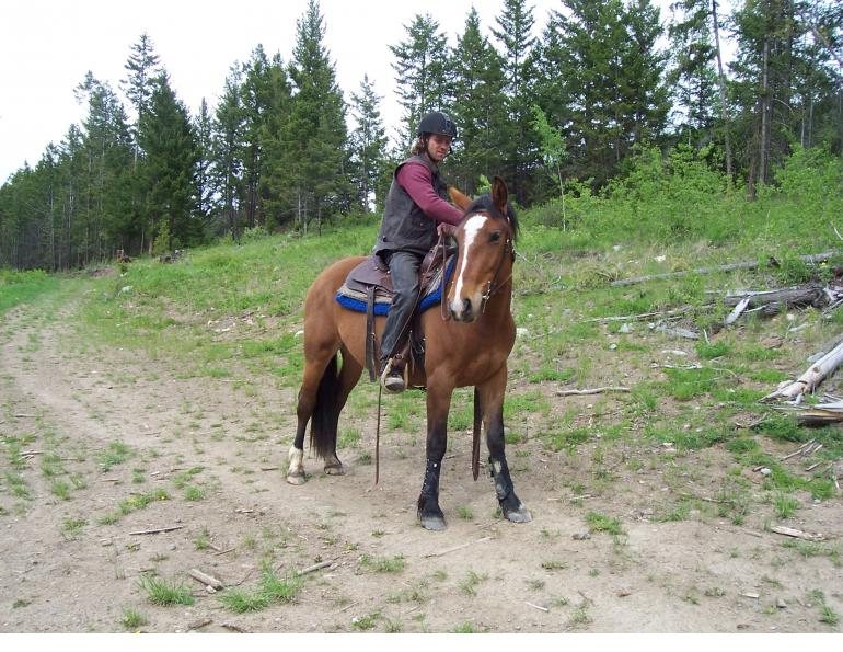 riding green horse, riding inexperienced horse, will clinging