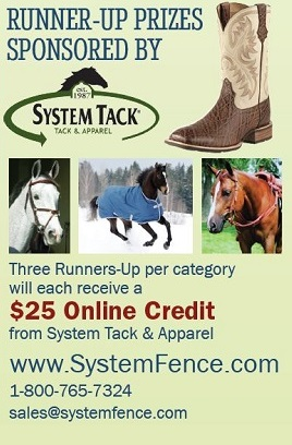 system tack photo contest